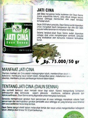 herbal daun jati cina- agen kapsul daun jati cina