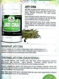 herbal daun jati cina