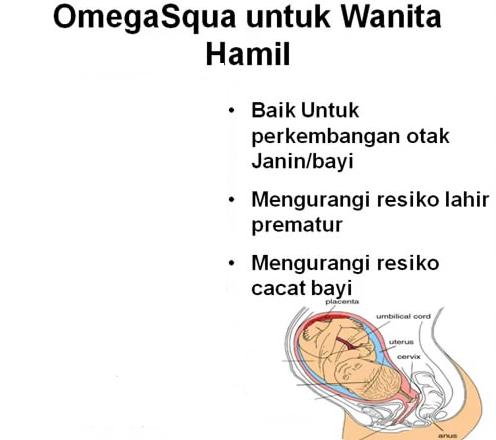 Omega Squa untuk Wanita Hamil- Agen Minyak Ikan Nutrisi Ibu Hamil-  Penyembuhan Penyumbatan Pembuluh Darah- Natural OMEGA Squa