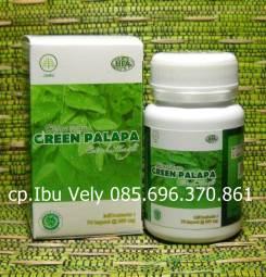 Klorofil Green Palapa HPA- Asam Urat - Penyembuhan Asam Urat