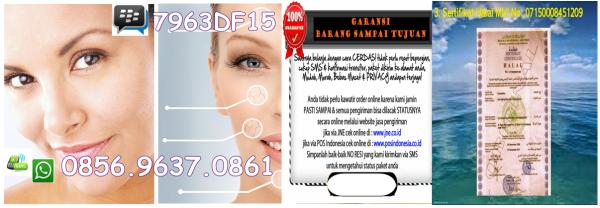 squalane oil for skin wholesale- Jual Squalane